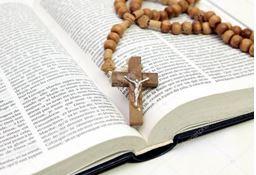 Fig rosario